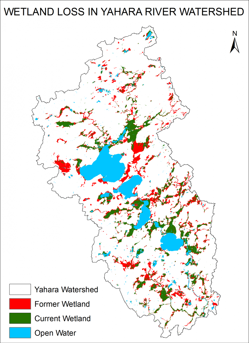 Wetlands Loss in Yahara River Watershed